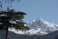 VII Научно-практическая экспедиция в Индию
